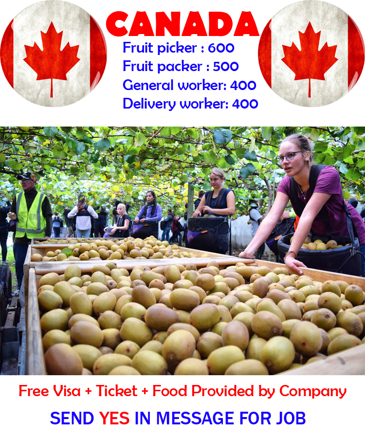 New-Jobs-in-Canada-for-foreigner-2021